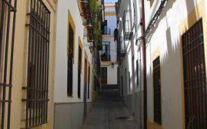 portes y mudanzas Sevilla